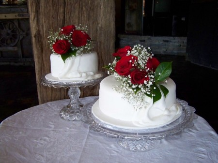 900x900px-LL-10729ad1_modulescopperminealbumsuserpics75088two_tier_wedding_cake[1]